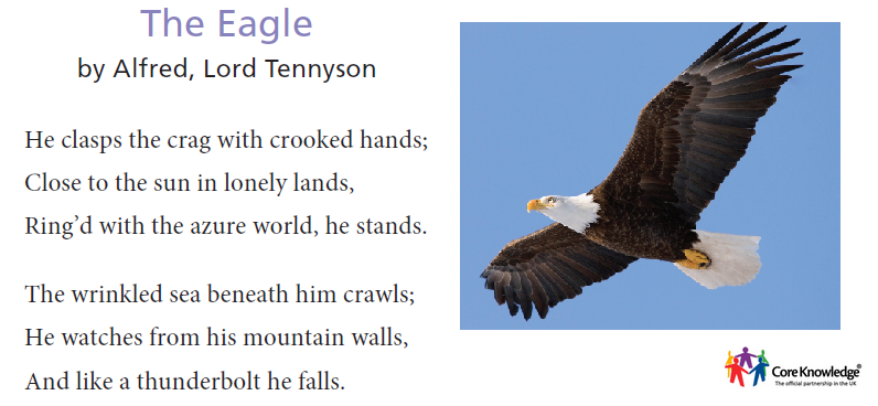 6theeagle.png